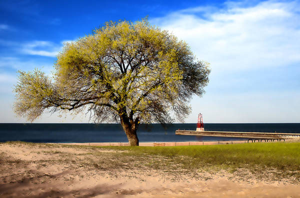 Photograph - Art By The Lake by Milena Ilieva