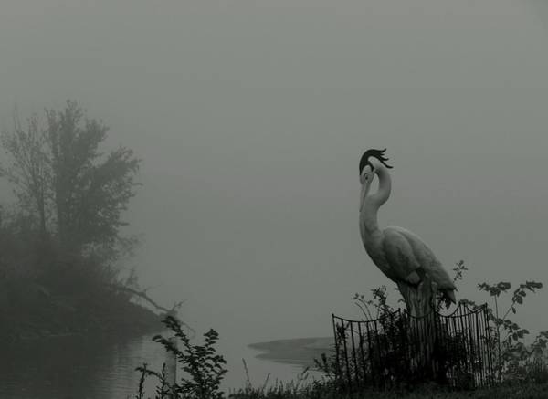 Photograph - Art In Mist by Wild Thing