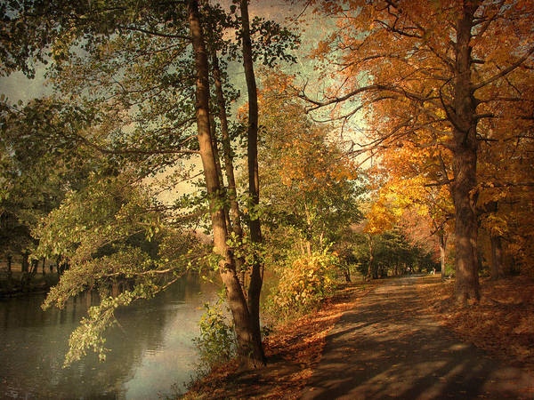 Photograph - Artful Autumn by Jessica Jenney
