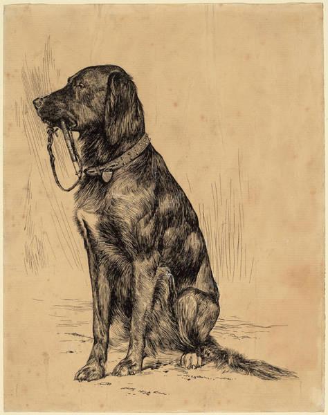 Prepare Drawing - Arthur B. Davies, Aldrichs Dog, American by Quint Lox