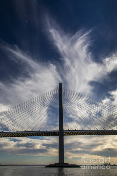 Cable-stayed Bridge Photograph - Arthur Ravenel Jr  Bridge Cooper River Charleston by Dustin K Ryan