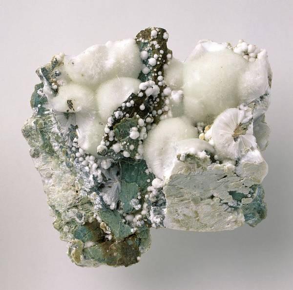 Carbonate Photograph - Artinite Crystals In Rock Groundmass by Dorling Kindersley/uig