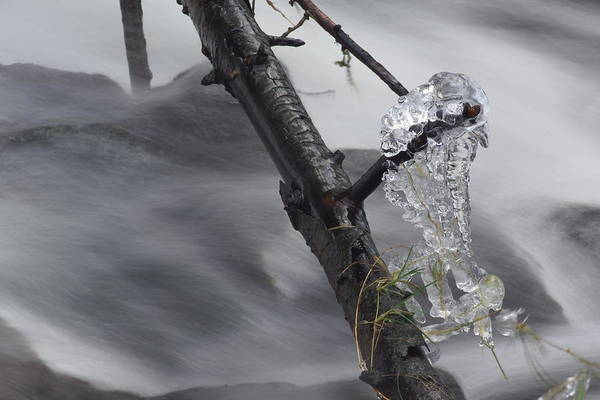 Photograph - Artistry In Ice 24 by David Birchall