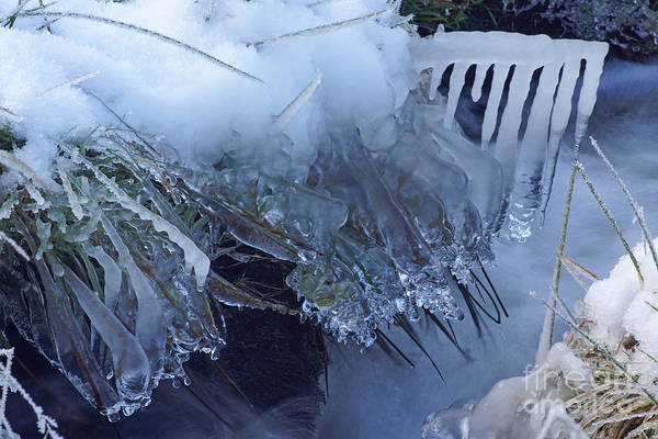 Photograph - Artistry In Ice 25 by David Birchall