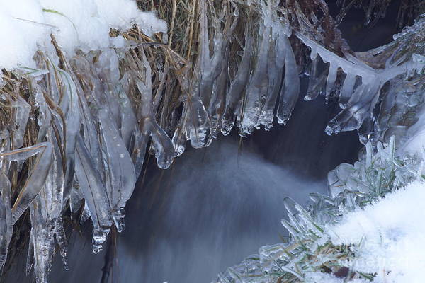 Photograph - Artistry In Ice 26 by David Birchall