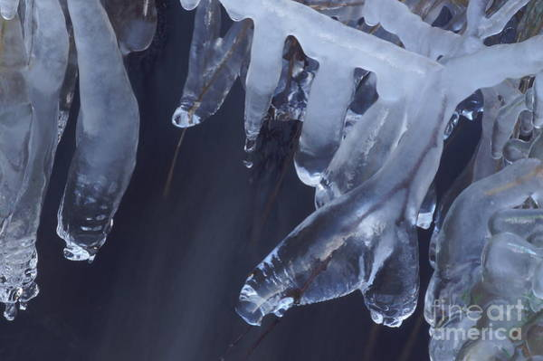Photograph - Artistry In Ice 27 by David Birchall