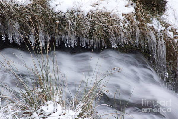 Photograph - Artistry In Ice 28 by David Birchall