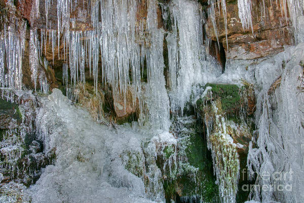 Photograph - Artistry In Ice 6 by David Birchall