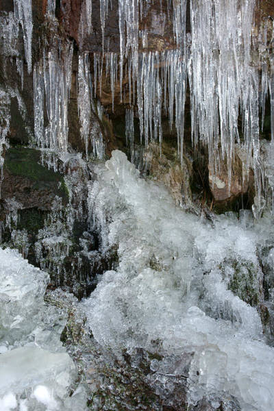 Photograph - Artistry In Ice 7 by David Birchall