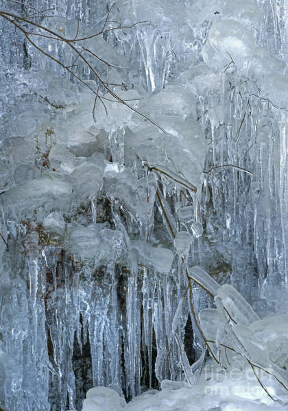 Photograph - Artistry In Ice 9 by David Birchall