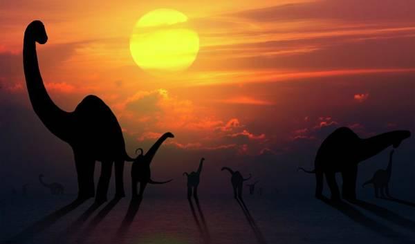 Wall Art - Photograph - Artwork Of Sauropod Dinosaurs At Sunset by Mark Garlick/science Photo Library
