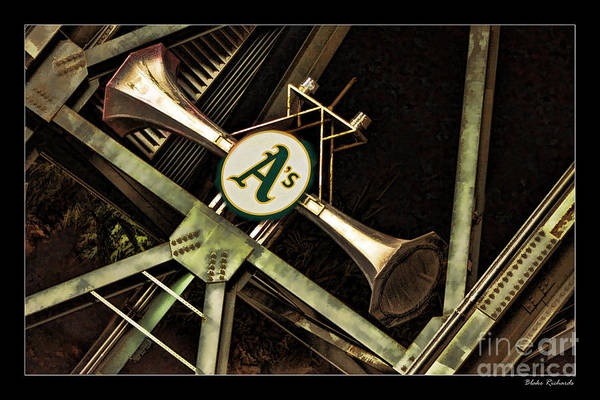 Photograph - A's Horns by Blake Richards