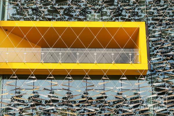Pohutukawa Photograph - Asb Building Window by Bob Phillips