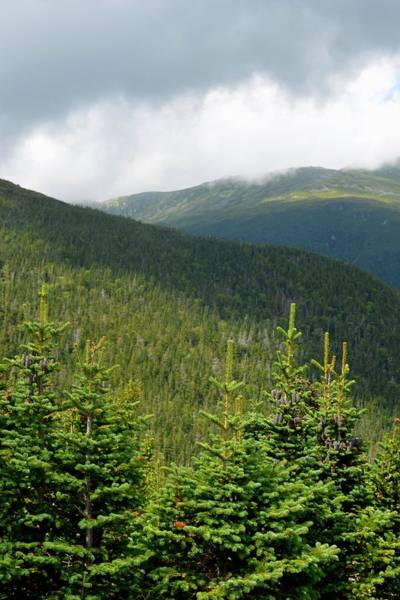Photograph - Ascending Mount Washington Nh by Toby McGuire