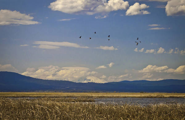 Photograph - Ash Creek State Wildlife Area by Sherri Meyer