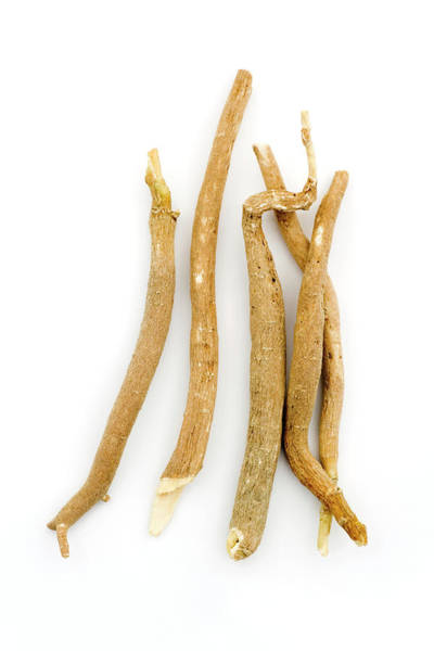 Tonic Photograph - Ashwagandha Root (withania Somnifera) by Geoff Kidd/science Photo Library