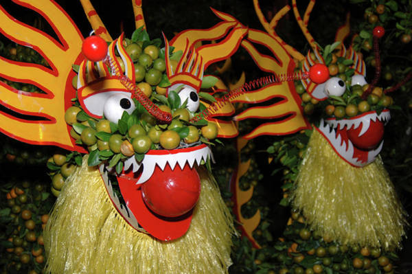 Asia, Vietnam Nagas Made With Oranges Art Print by Kevin Oke