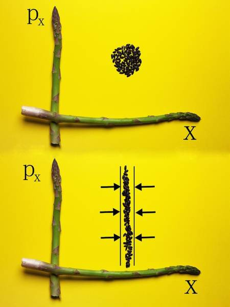Wall Art - Photograph - Asparagus And Black Rice Depicting Heisenberg Uncertainty Food Physics by Paul Ge