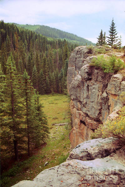 Photograph - Aspen Cliff by Teri Brown