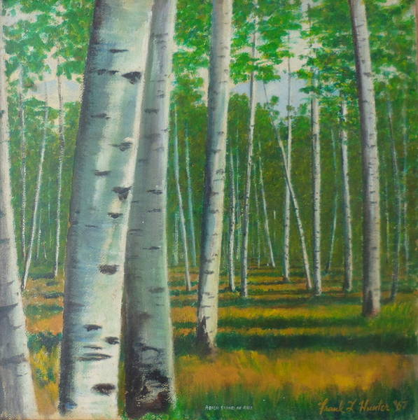 Painting - Aspen Forest In Arizona by Frank Hunter