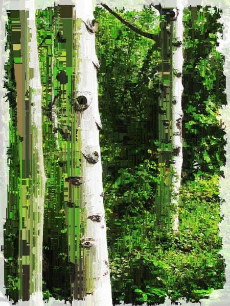 Wall Art - Digital Art - Aspen Grove 2 by Tim Allen