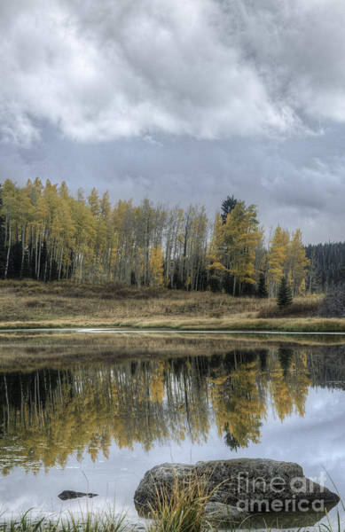 Photograph - Aspen Reflection And Boulder by David Waldrop