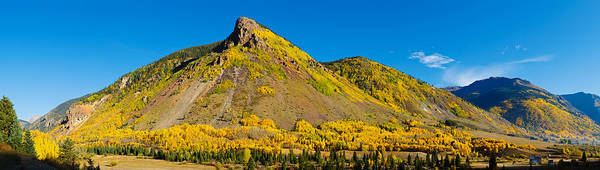 Silverton Photograph - Aspen Trees On Mountain, Anvil by Panoramic Images