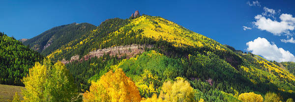 Telluride Photograph - Aspen Trees On Mountain, Needle Rock by Panoramic Images