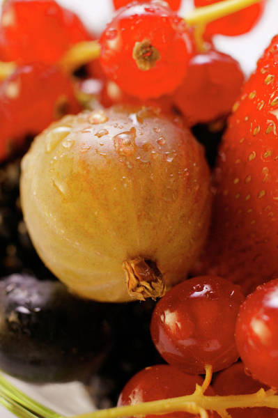 Wall Art - Photograph - Assorted Fresh Berries (close-up) by Foodcollection