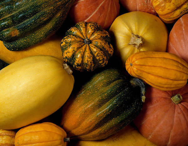 Assortment Of Squash Art Print by Brand X Pictures