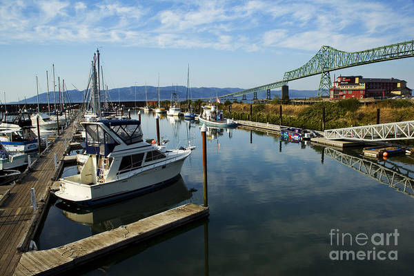 Photograph - Astoria Harbor by Charmian Vistaunet