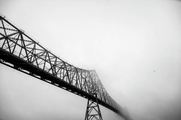 Astoria Photograph - Astoria-megler Bridge And Seagull In Fog by Mike Hill