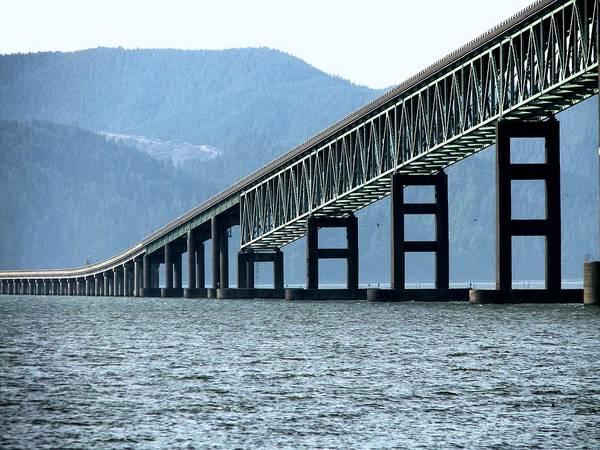 Photograph - Astoria-megler Bridge Cormorants by Lora Fisher