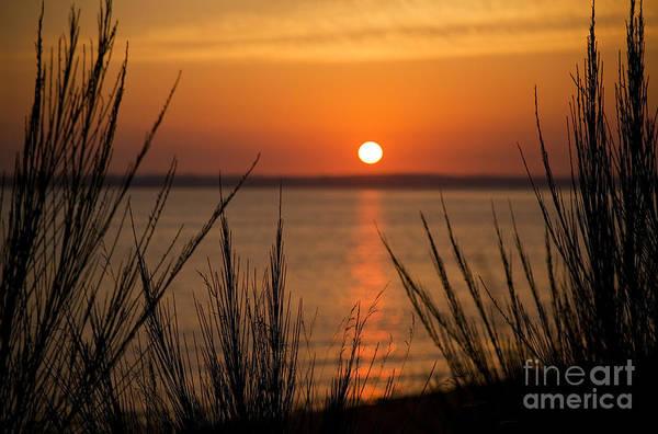 Photograph - Astoria Sunset by Charmian Vistaunet