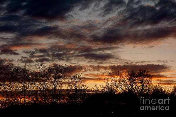 Photograph - At Days End by Jacqueline Athmann