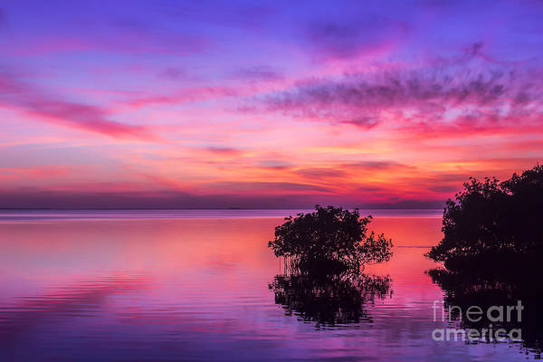 End Of Summer Photograph - At Days End by Marvin Spates