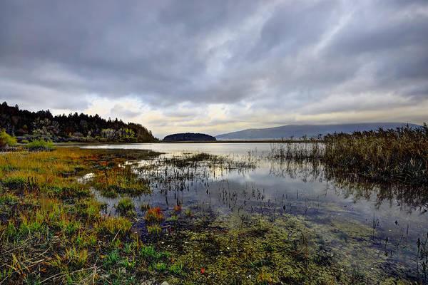 Photograph - At Lake Cerknica by Ivan Slosar