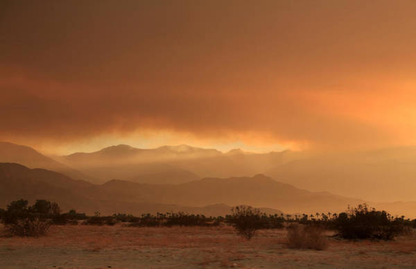 Palm Desert Photograph - At Least A Ray Of Hope by Laurie Search