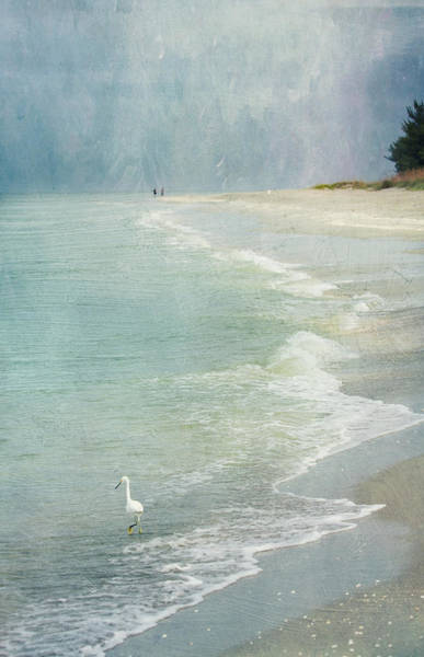 Photograph - At The Beach - Captiva Island by Kim Hojnacki