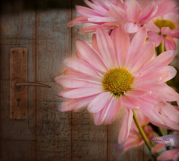 Photograph - At The Door by Bellesouth Studio