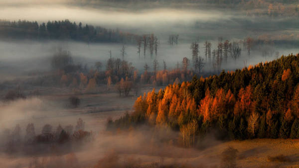 Fog Photograph - At The Gates Of The Valley. by Izabela Laszewska-mitrega/darek Mitr?ga