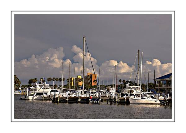 Photograph - At The Marina by Alice Gipson