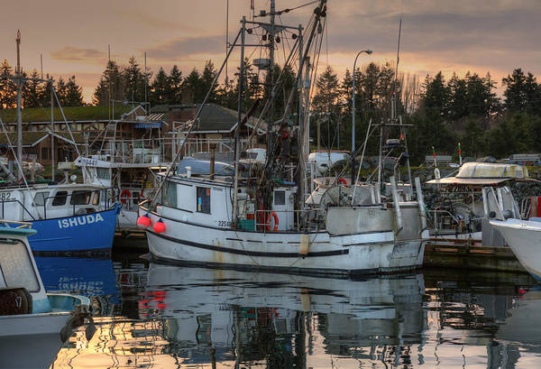 Photograph - At The Marina by Randy Hall