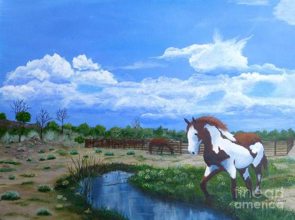 At The Ranch Art Print