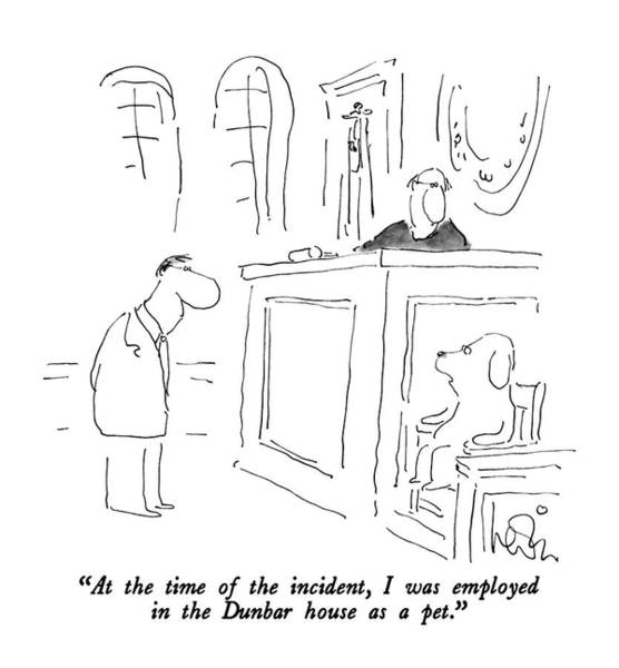 House Pet Drawing - At The Time Of The Incident by Arnie Levin