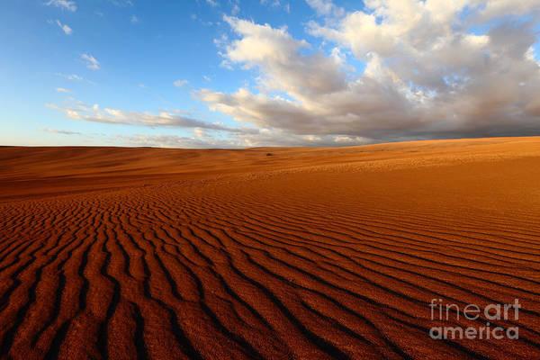 Photograph - Atacama Desert Wilderness by James Brunker