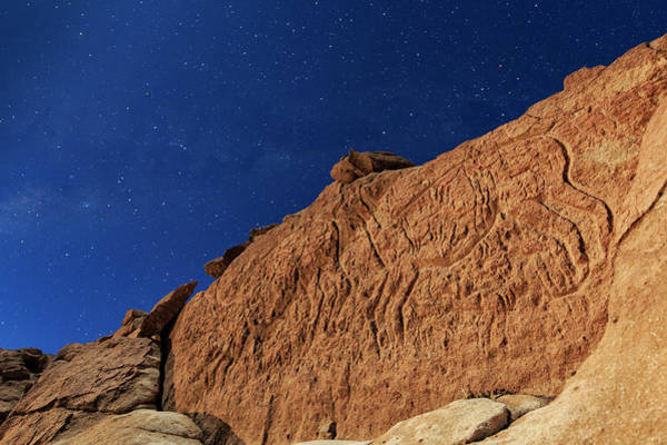 Petroglyph Photograph - Atacama Llama Rock Art In Moonlight by Babak Tafreshi/science Photo Library