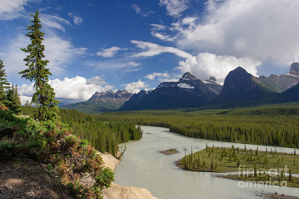 Photograph - Athabasca Lookout by Charles Kozierok