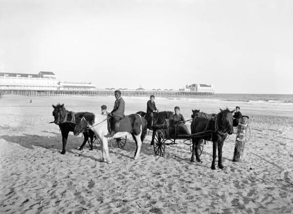 Wall Art - Photograph - Atlantic City Horses by Granger