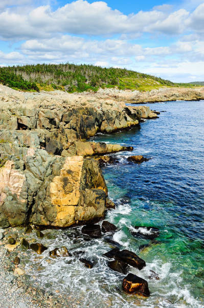 Photograph - Atlantic Shoreline by Don and Bonnie Fink